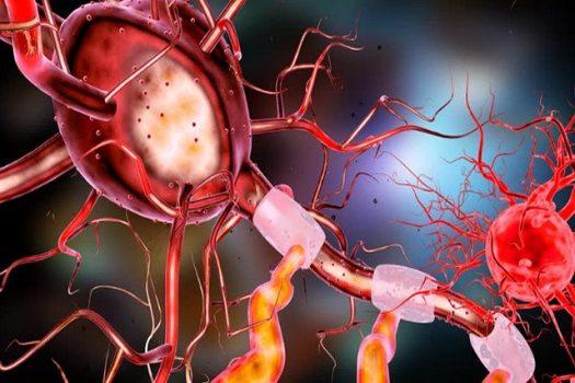 ilustracja neuronu