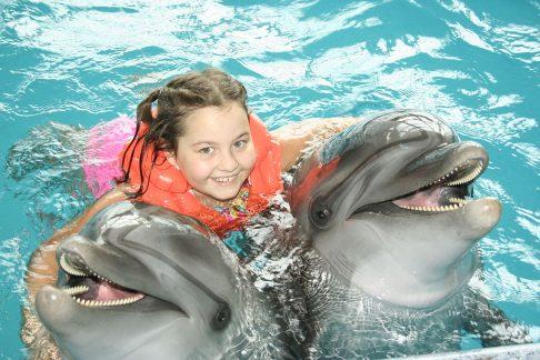 zabawa z delfinami